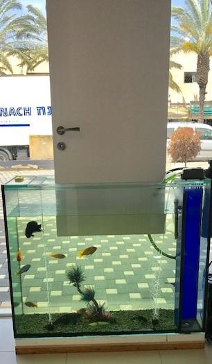 דלת עמידה במים - באקווריום